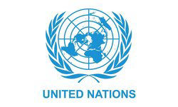 NewEdge Consulting client United Nations - IT management consulting and project management